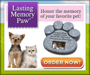 As Seen At TV Presents: Lasting Memory Paw - $19.95 + S&H - Honor the Memory of your Favorite Pet! Weather resistant; Photo holder to hold your favorite picture of your pet; Looks & feels like real stone; The perfect thoughtful gift! Your pet is an important part of your family. You've built so many lasting memories together. But our special friends pass on too soon and when they leave it feels like a part of the family is gone. Now there is a truly special way to honor the memory of your cherished dog or cat.Order today and you'll receive one Lasting Memory Paw� Memorial Marker for only $19.95 + $6.95 S&H. You may also order two for $34.90 + $8.95 S&H, or three for $44.85 + $9.95 S&H.  Sales tax will be applied to orders from New Jersey. This offer is covered by a 30-day money back guarantee.. Available here on http://www.AsSeenAtTV.com!